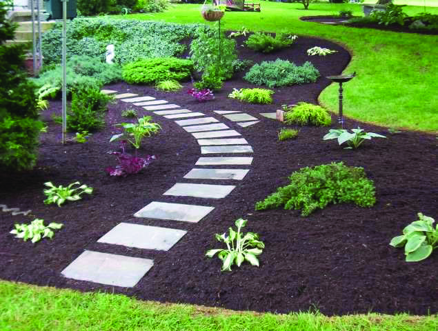 mulch walkway ideas google search mostly succulents and