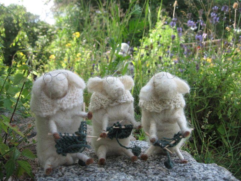 Oma Schaf strickt dicke Pullover für die ganze Familie und das am liebsten mit all ihren Freundinnen inmitten der blühenden Lavendelfelder...