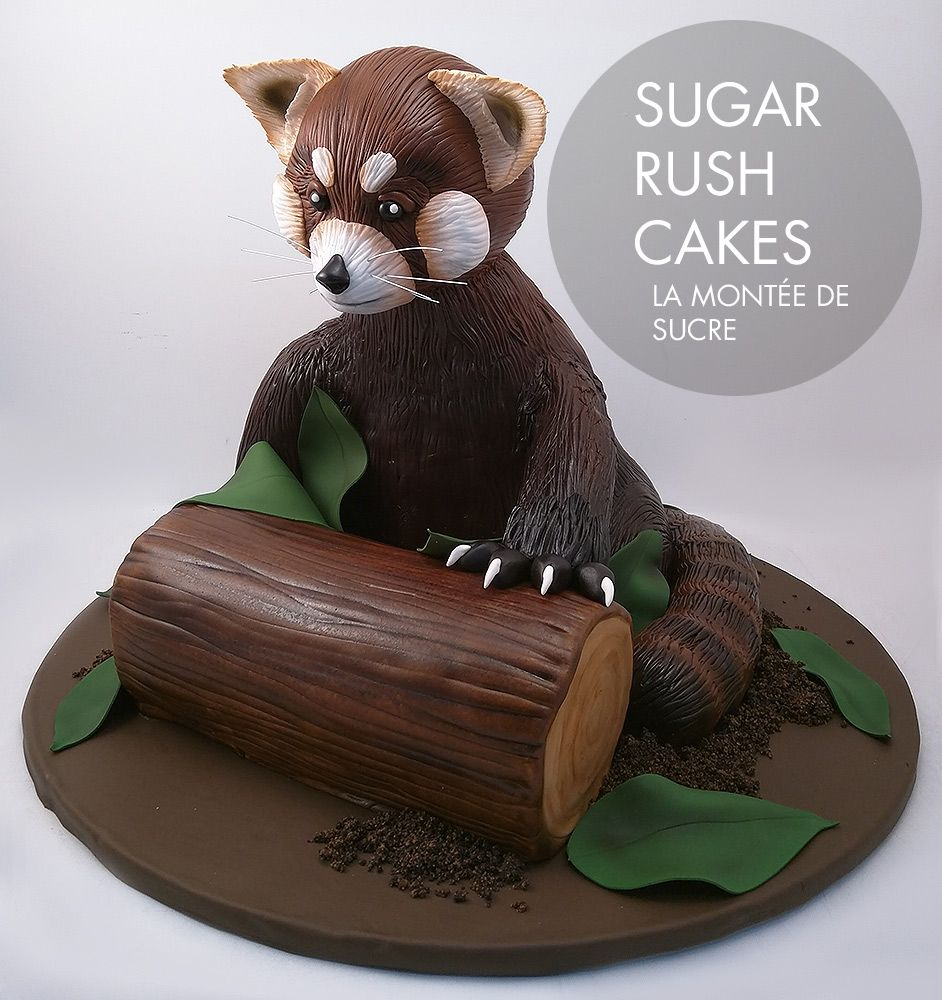 Red Panda Cake Birthday Cake Pinterest Panda Cakes Red Panda