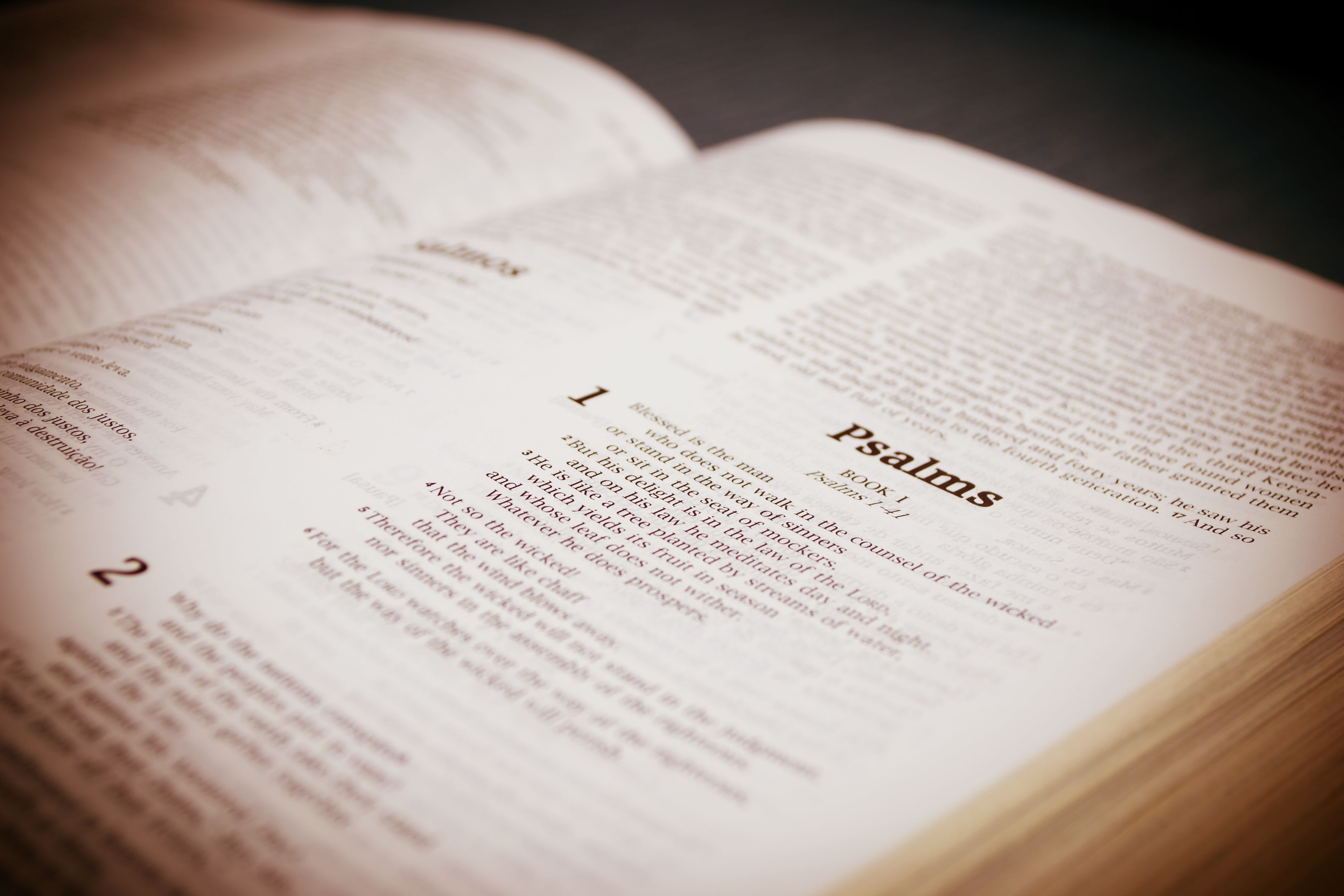 The Bible is the most published book in the world 96