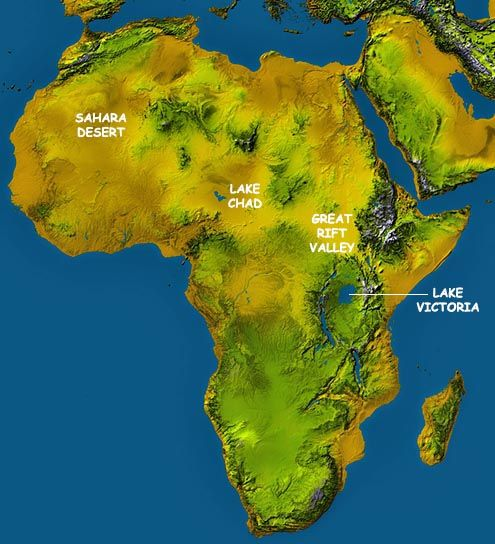 Topo Map Of Africa africa topographical map | Africa map, Africa travel, Africa
