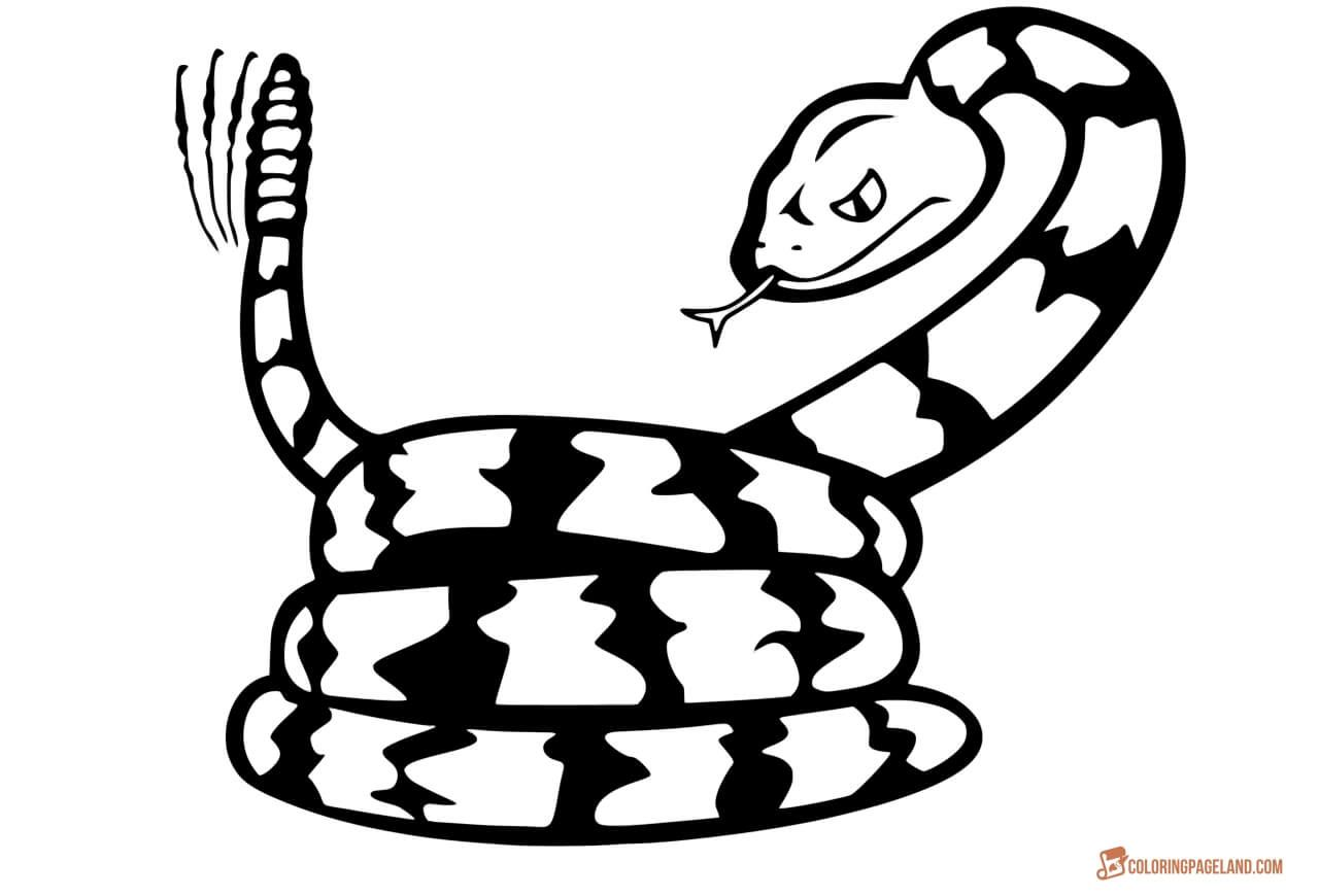 Snake Coloring Pages Free Downloadable And Printable Sheets
