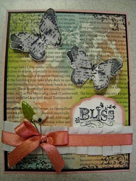 Bliss - love the background paper