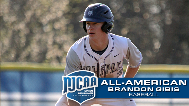 Wolfpack Baseball S Brandon Gibis Named All American College Athletics Baseball College Baseball