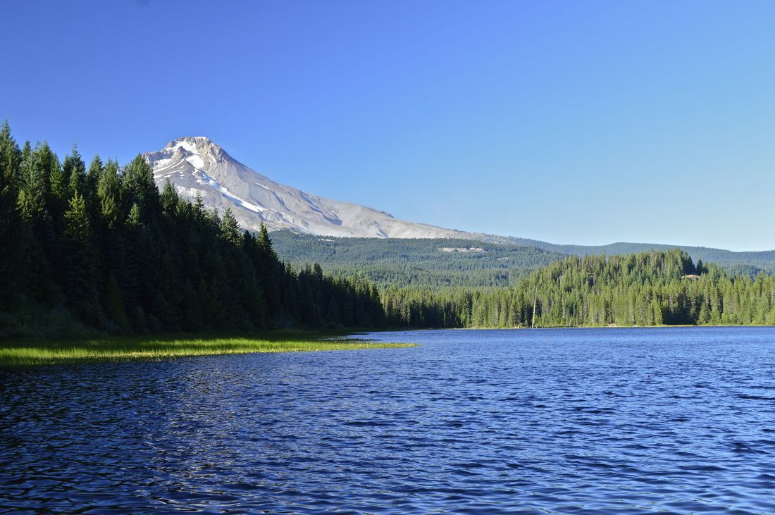 a view of mt. hood from the west side of trillium lake   fun