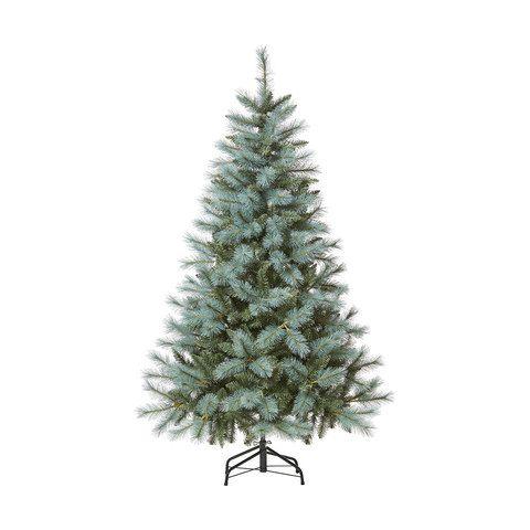 Kmart Christmas Trees.1 82m 6ft Blue Spruce Christmas Tree Kmart It S The