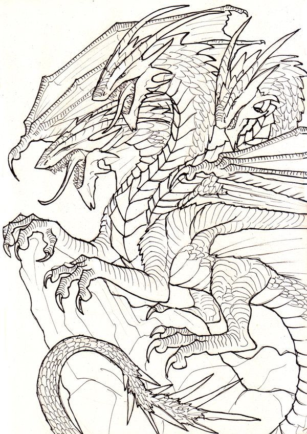 3 Heads Line Art By Ruth Tay On Deviantart Dragon Coloring Page Art Dragon Sketch