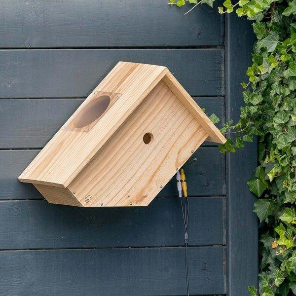 Hangen Sie Einen Nistkasten Bzw Ein Vogelhauschen Auf Und Geben