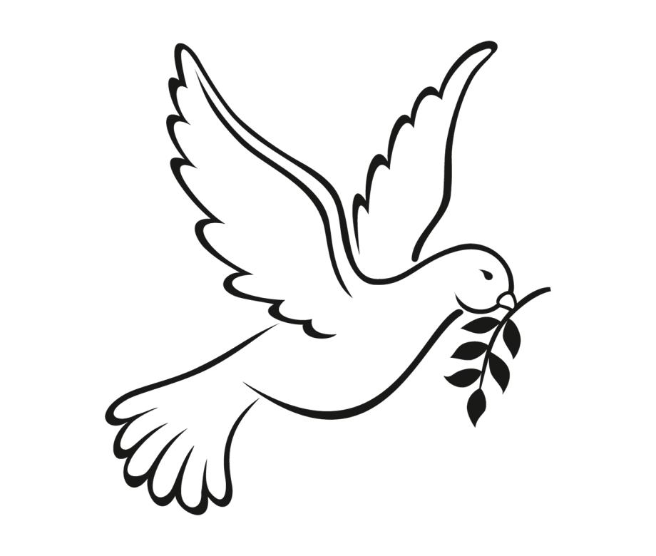 Dove Clipart Png Ideas Dove Outline Clip Art Dove Drawing