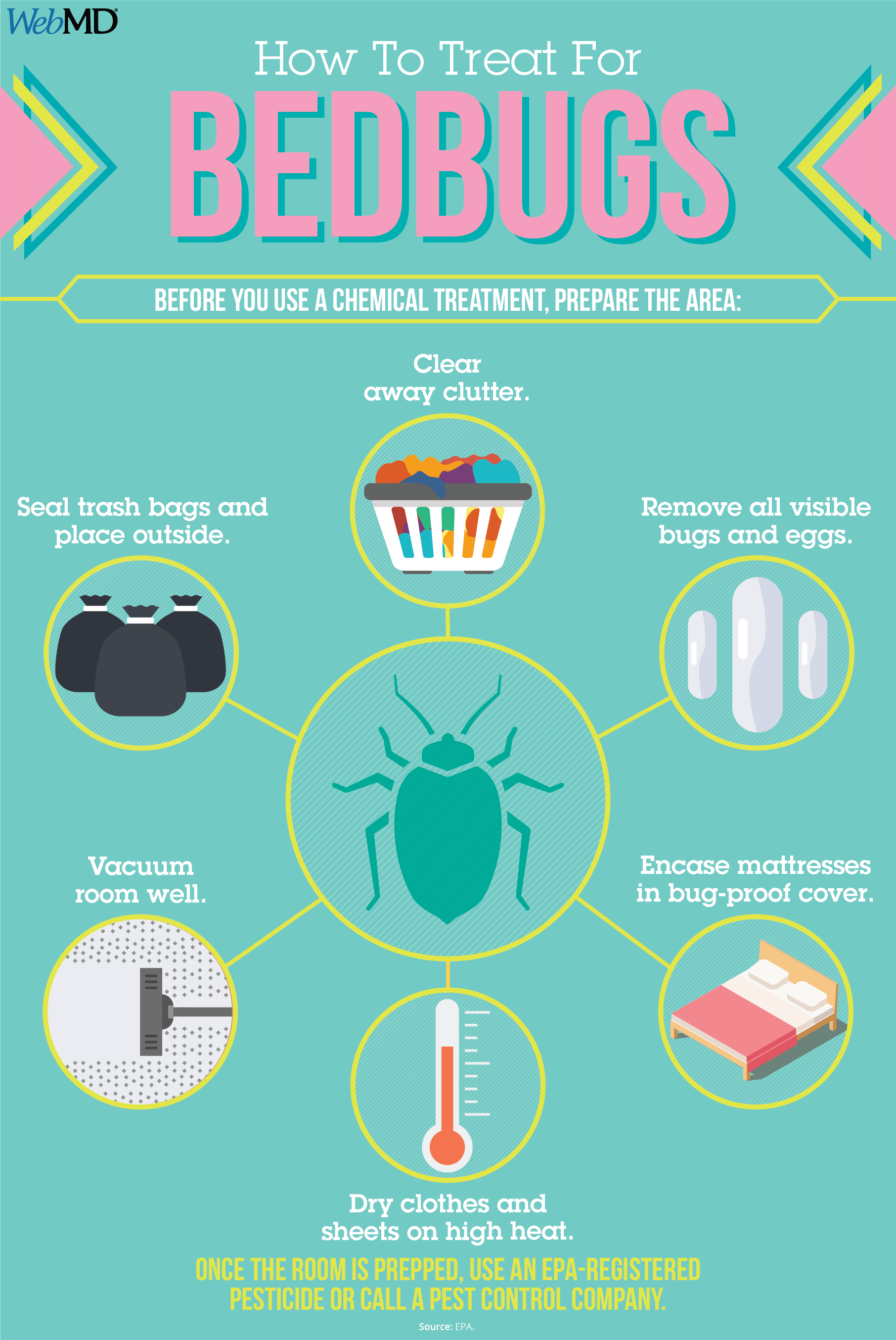 Slideshow Bedbugs In Your Sheets? Bed bugs, Emergency