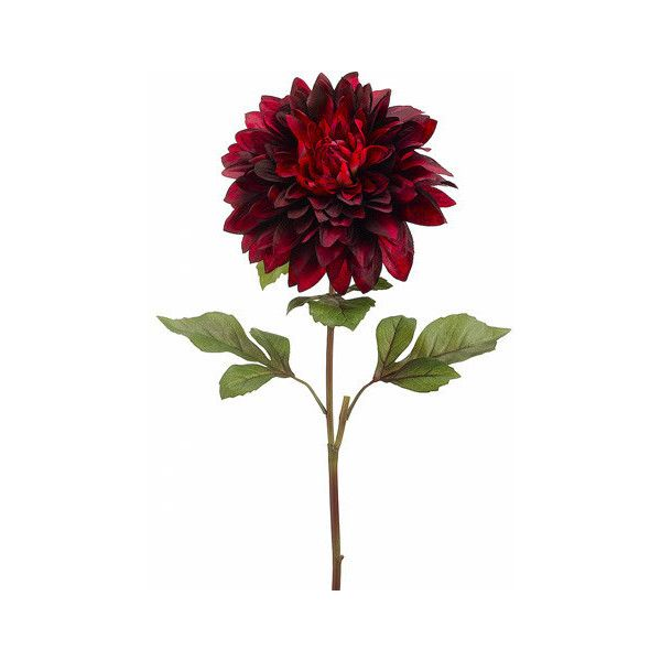 Oversized Faux Dahlia In Two Tone Red Burgundy9 Bloom X 25 5 Tall 7 99 Liked On Polyvore Featuring Ho Dahlia Flower Silk Flowers Wedding Burgundy Dahlia