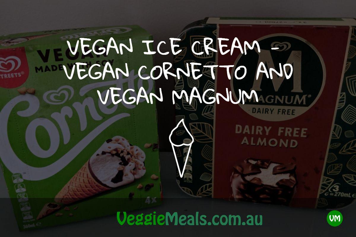 VEGAN ICE CREAM VEGAN AND VEGAN MAGNUM Vegan