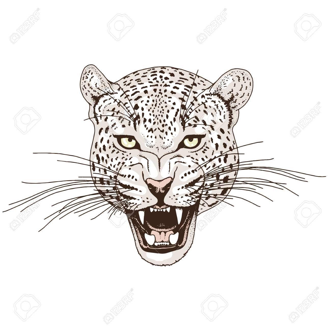 Vector Leopard Face Tattoo Vector Illustration Print Leopard Tattoos Cat Face Tattoos Leopard Face