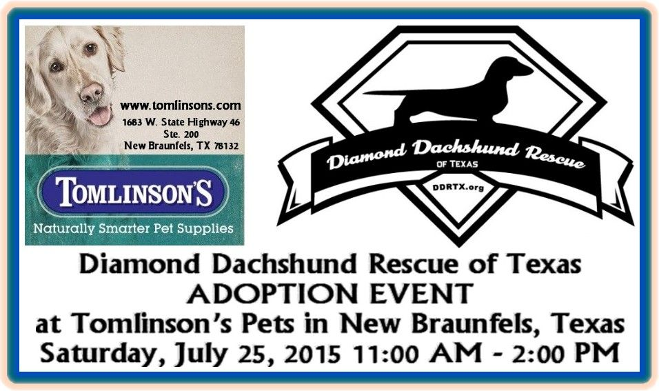 Diamond Dachshund Rescue of Texas ADOPTION EVENT at