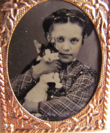 Tintype- girl with kitty
