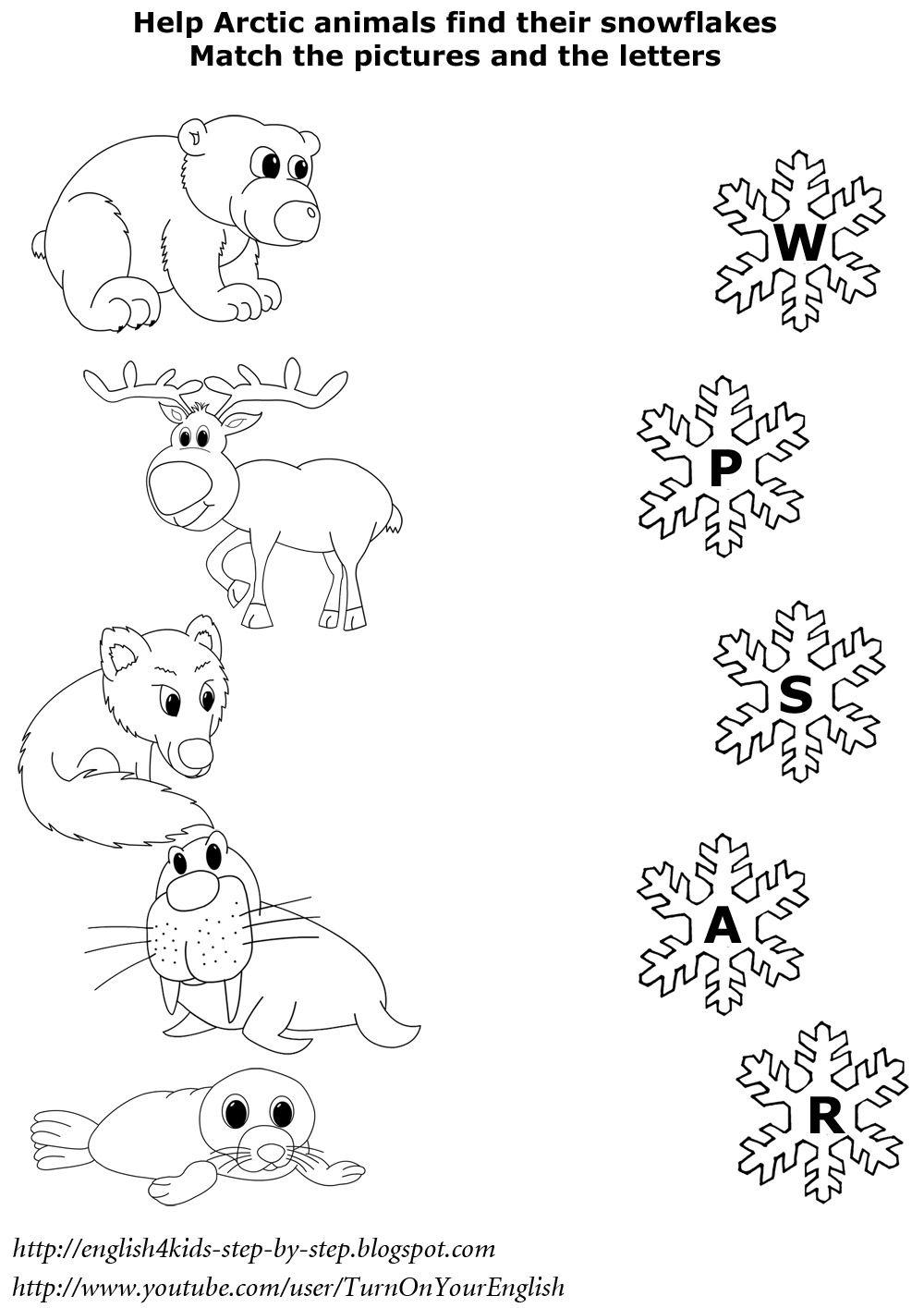 North animals matching worksheet esl also english learning rh pinterest