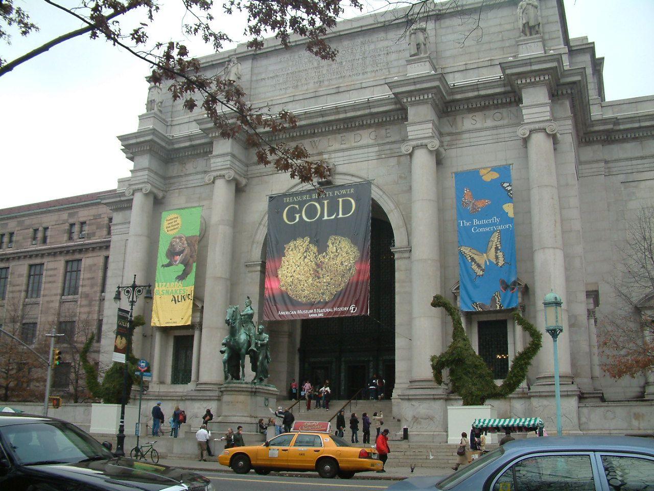 175897fbff0075cfed9335d07f3d8560 - How Do I Get To The Museum Of Natural History