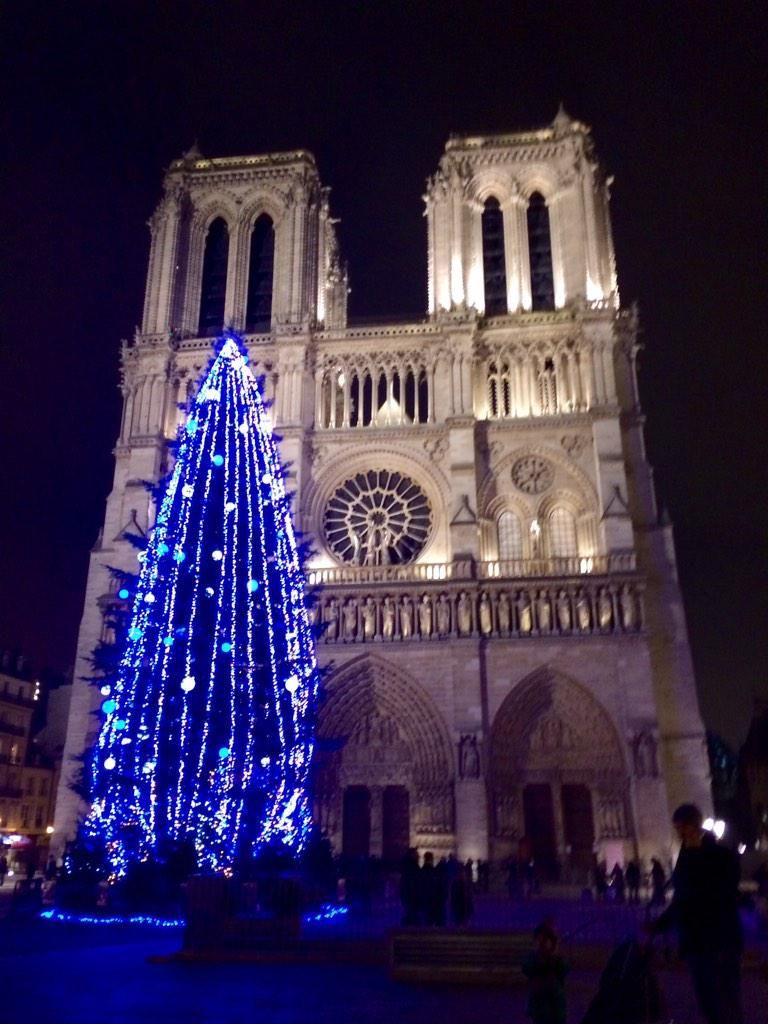 Cathédrale Notre-Dame de Paris. NAVIDAD   http://instagram.com/p/wAIhGqDPIu/
