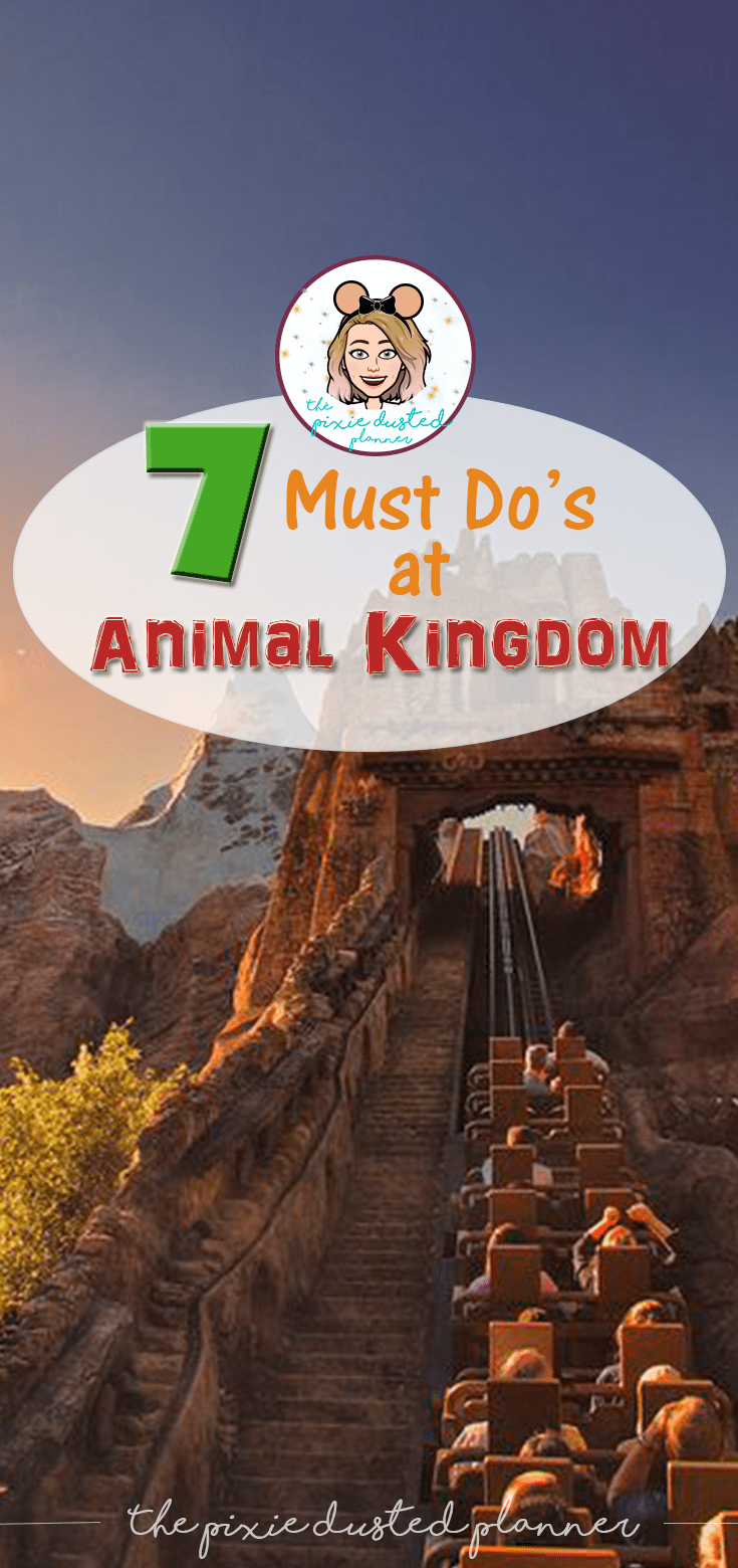 7 Must Do's At Animal Kingdom (With Images)