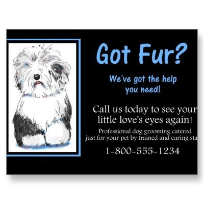 Business Dog Grooming Postcard Client Relations From Http Www Zazzle Com Vet Tech Gifts Vet Tech Gifts Vet Tech Dog Grooming