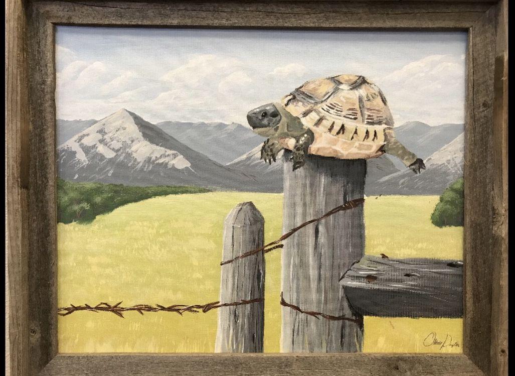 A Turtle On A Fence Post School Of Medicine News Uab