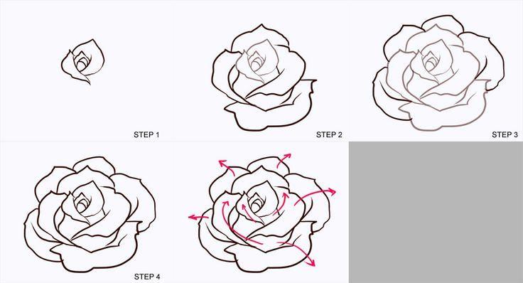 Bildergebnis für drawing a rose realistic