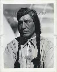 Image result for long black hair braids for men native ...