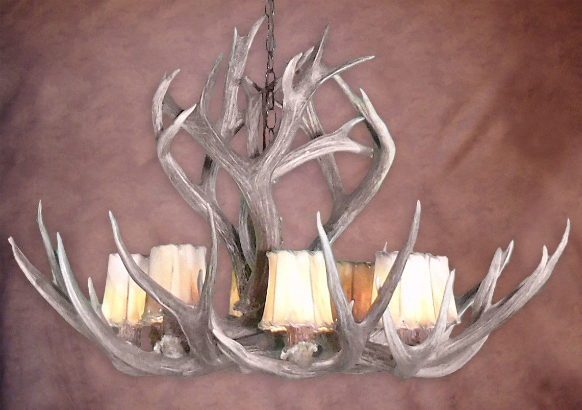 Large real antler mule deer rocky mountain chandelier light mdrm l large real antler mule deer rocky mountain chandelier light mdrm l arubaitofo Image collections