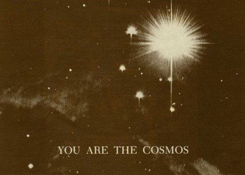 we are the cosmos...
