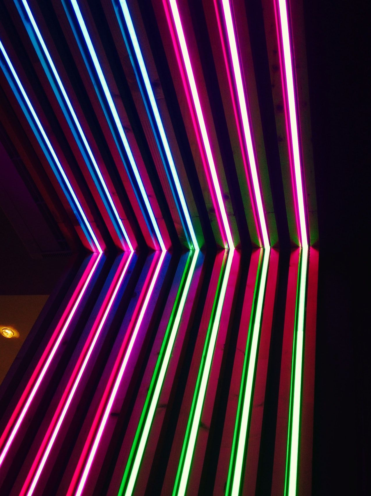 Neon, color, macro and stripe HD photo by David Pisnoy