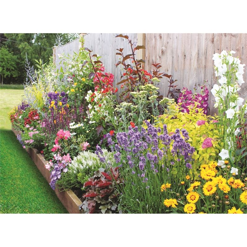 Bee And Butterfly Border Collection 3m X 60cm Cottage Garden Borders Flower Garden Borders Garden Borders