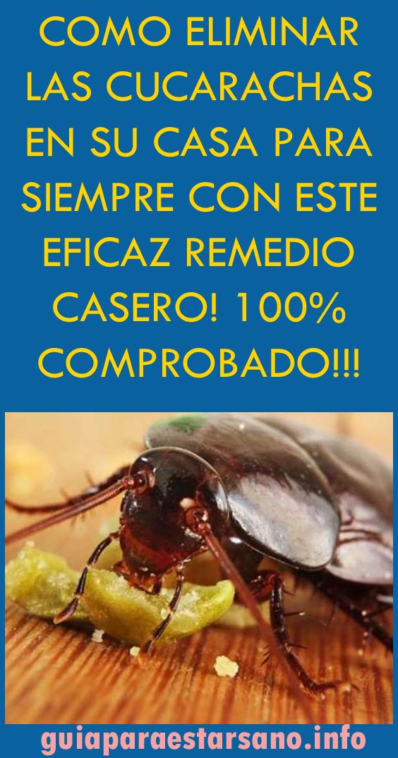 Como Eliminar Las Cucarachas En Su Casa Para Siempre Con Este Eficaz Remedio Cas Remedios Para Cucarachas Repelente De Cucarachas Repelente De Mosquitos Casero