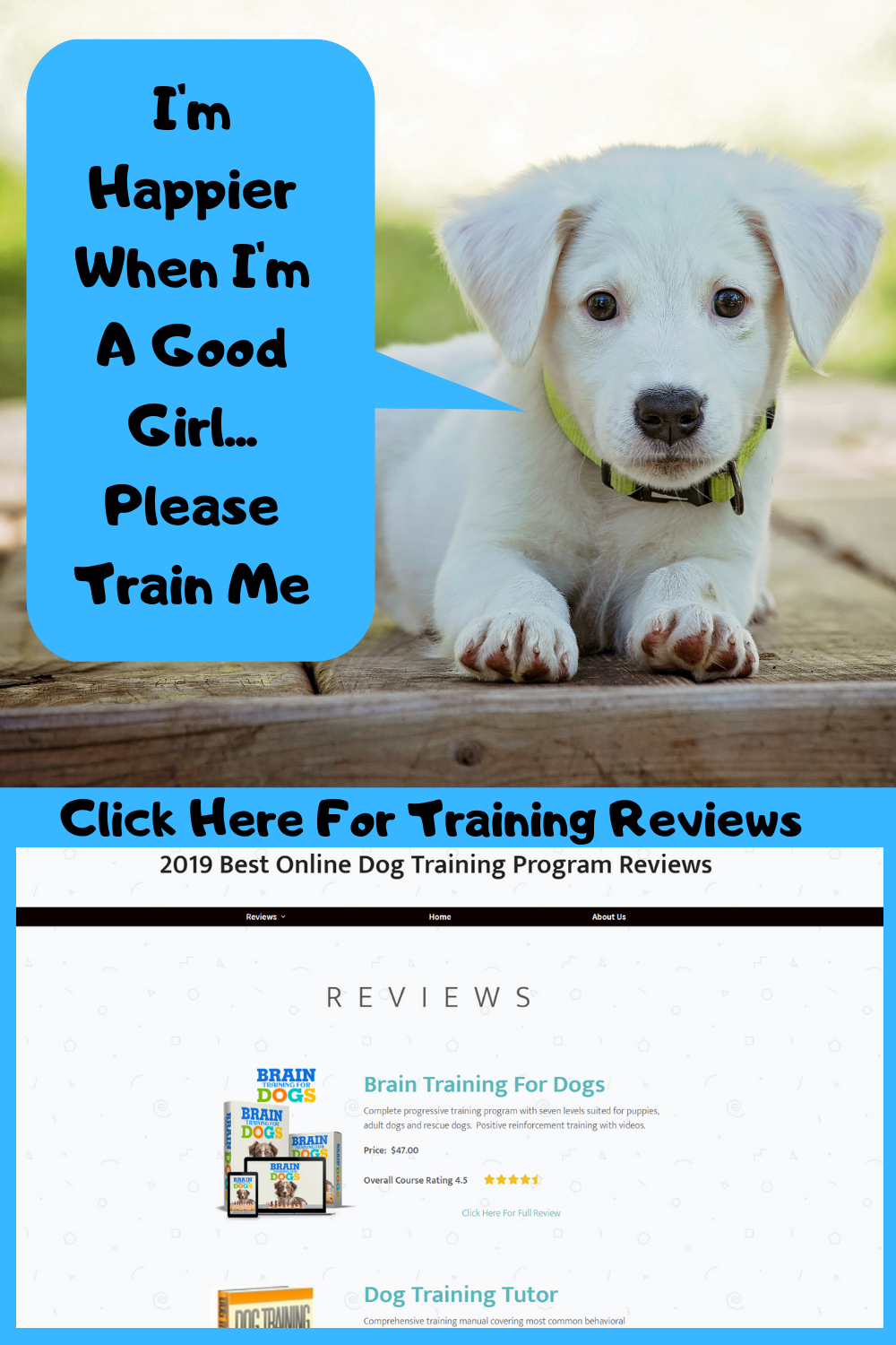 This Will Make Your Puppy Happier Dog Training Online Dog Training Training Your Puppy
