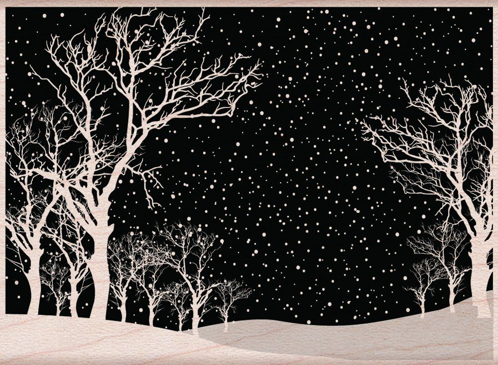 Amazon.com: Hero Arts Snowy Night Woodblock Stamp
