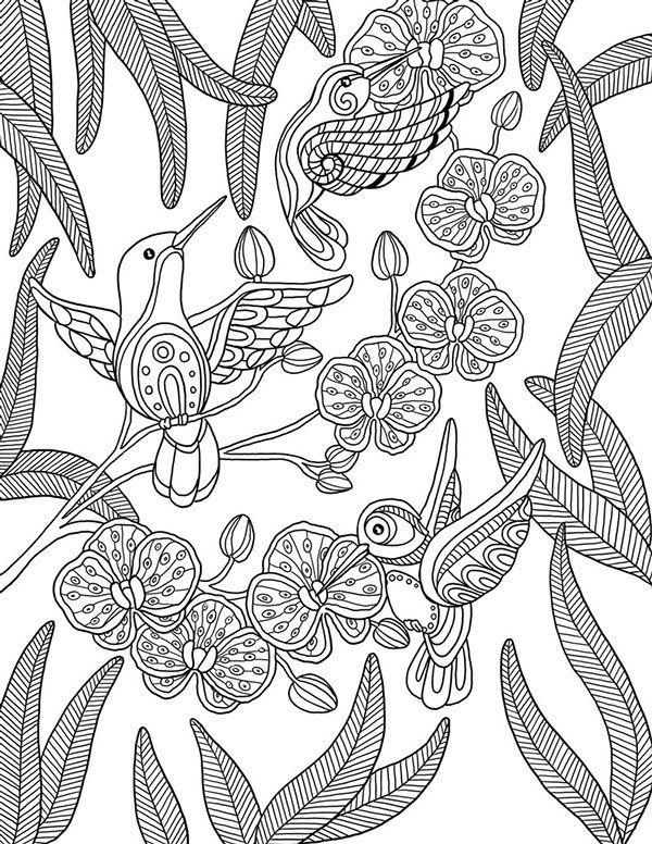 Dibujos para colorear mandala colibrí … | hilos y …