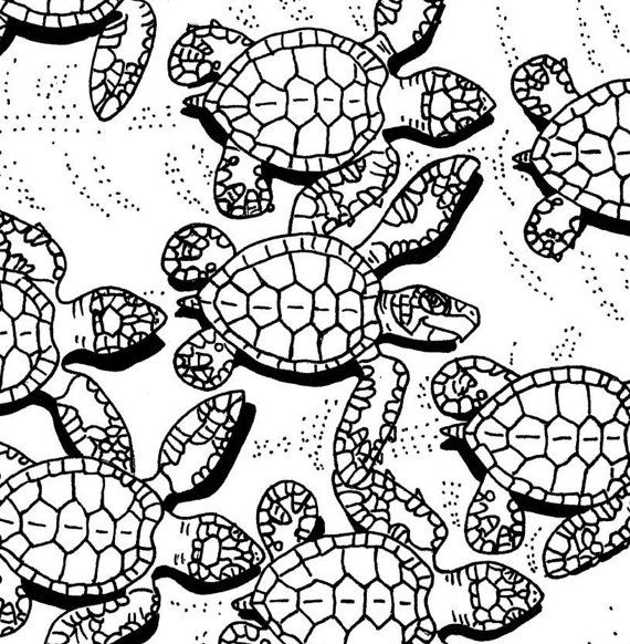 Baby Sea Turtles coloring page - embroidery pattern - sea turtle art ...