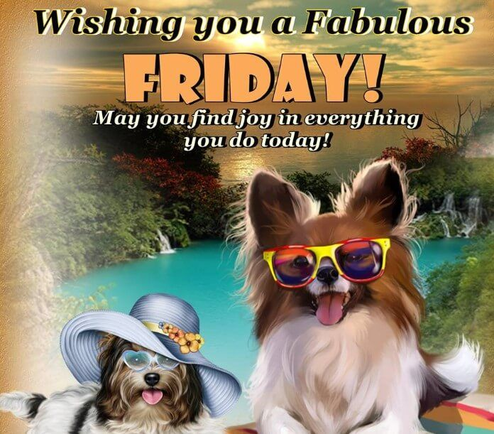 Best 40 Inspirational Friday Quotes And Sayings With Images For Work Events Yard Friday Inspirational Quotes Its Friday Quotes Friday Quotes Funny