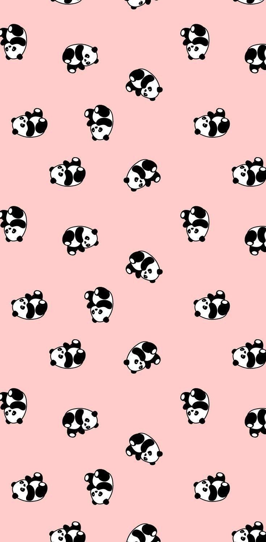 #babypandas