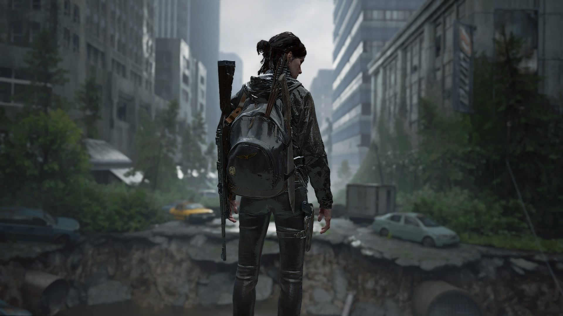 Pin On The Last Of Us2