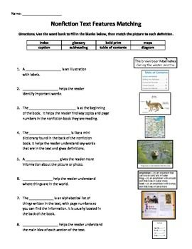 text feature activities - Google Search | Text Features ...