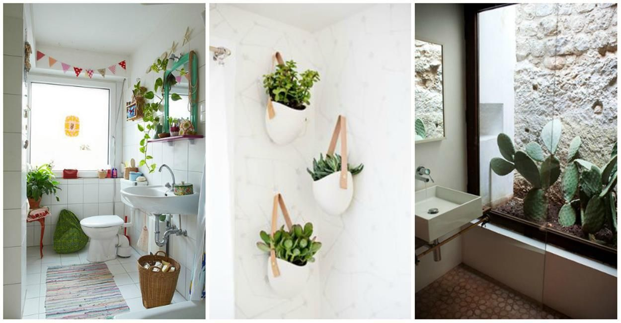 Perfect and beautiful hanging bathroom plants decor ideas
