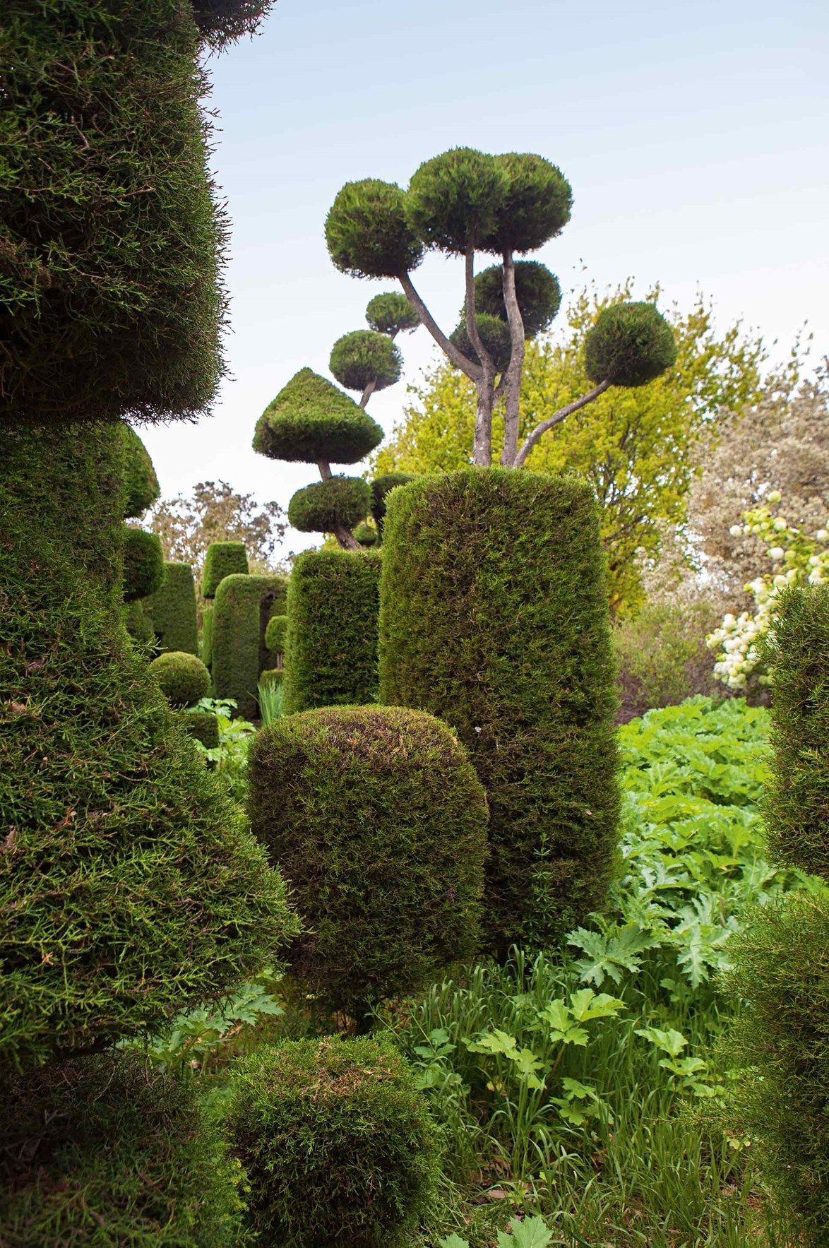 Country garden ideas Australia | Garden ideas australia ...