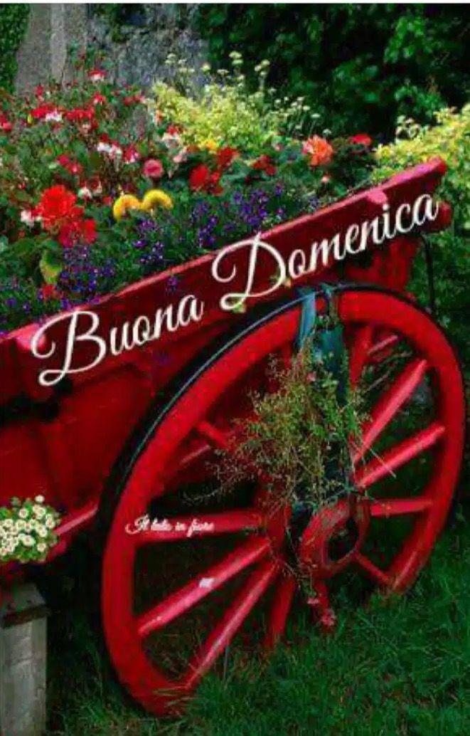 Pin di antonella su buona domenica garden wagon for Fioriera carriola