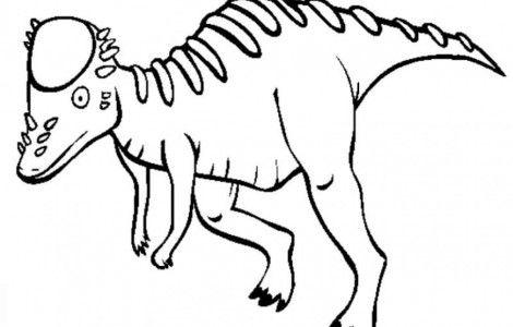 pachycephalosaurus dinosaur coloring pages