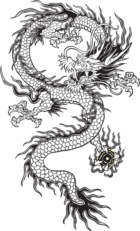 transparent chinese dragon tumblr black and white - google search