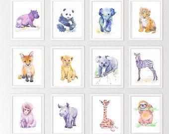 Decor De Chambre D Enfant Bebe Animaux Lot De 12 Gravures Peinture