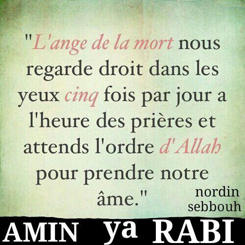 Epingle Par Fatima Mestoura Sur Sebbouh Nordin La Mort Islam Apprendre L Islam Citation Coran