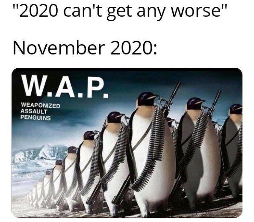 18 8k Likes 97 Comments Minimum Effort Meme Minimumeffortmeme On Instagram Laughs In Penguin Follow Zerobrainme Memes Funny Memes Dankest Memes