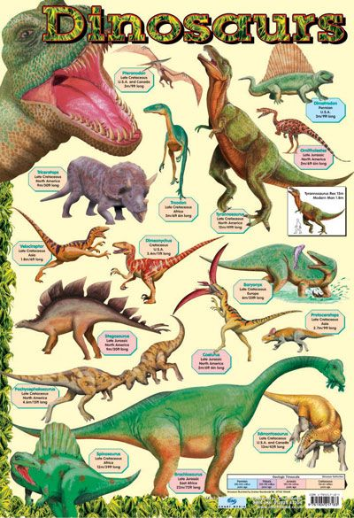 Natural History Amp Dinosaur Posters With Images