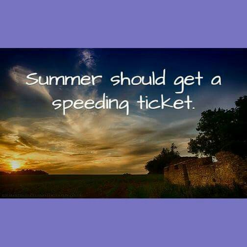 Funny Summer Quote